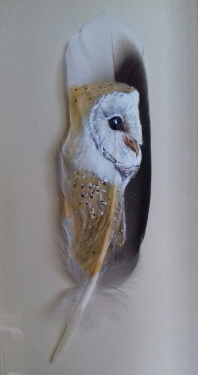 Barn owl painted on feather