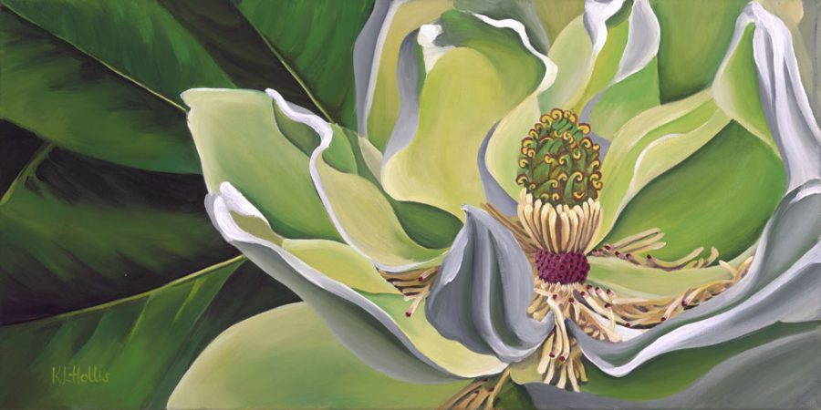 A painting depicting the flower of a Magnolia Grandiflora in tones of green