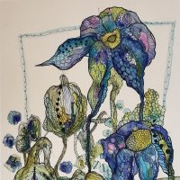 Weird botanical illustrations
