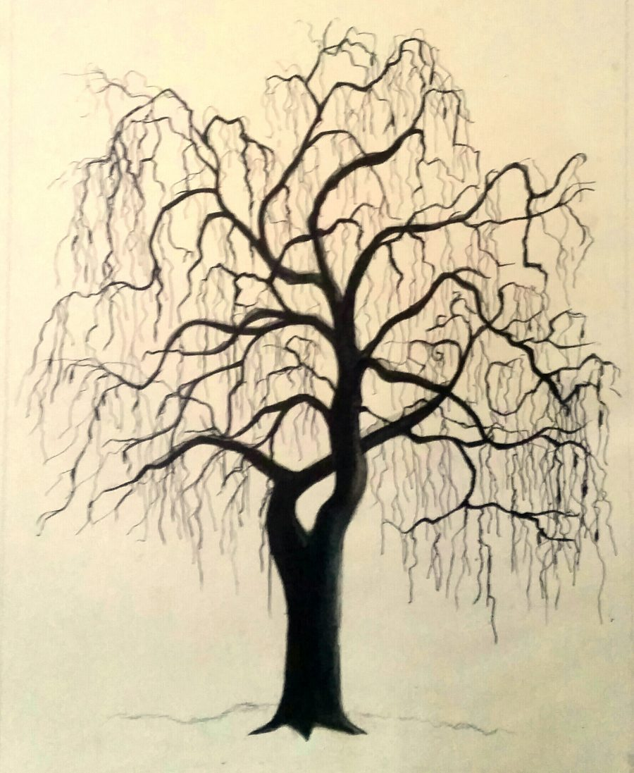 Painting of a tree in a cold winter in Preston Park in stark black and white