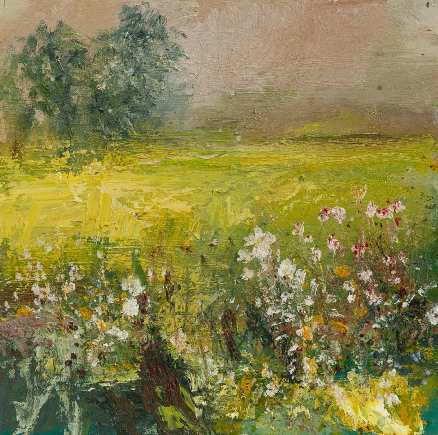 Landscape image with fields and flowers and trees