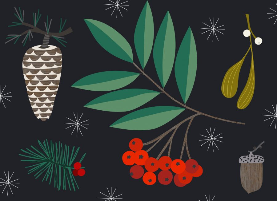 Sprigs of rowan, fir, mistletoe, a pine cone and an acorn drawn in a simple stylised way.