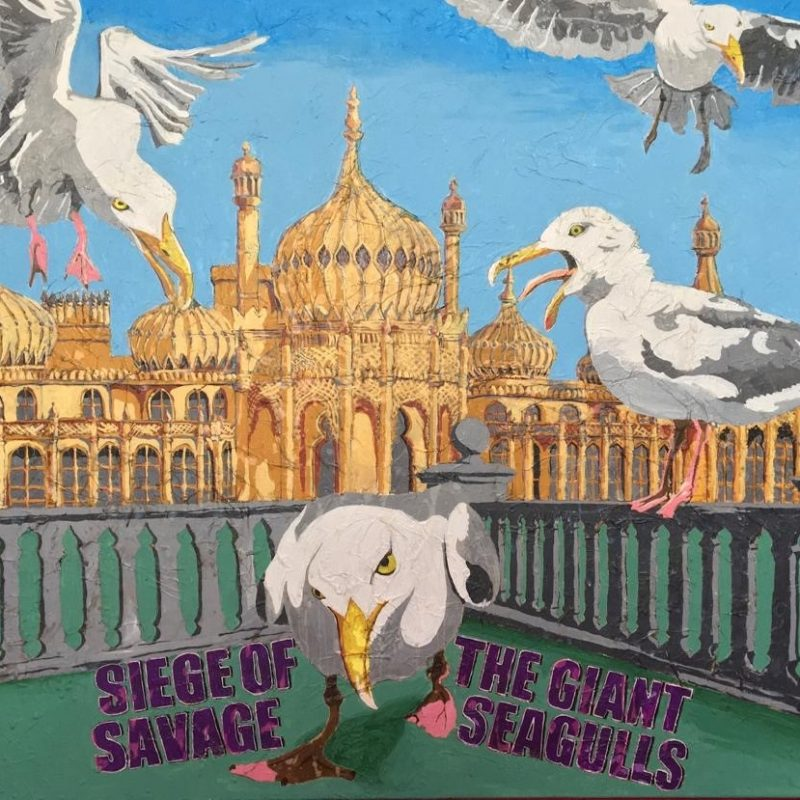 Seagulls attacking the Pavilion