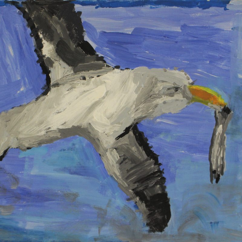 expressive acrylic painting on canvas of seagul with grey/black wings with fish in its beak. Pale blue background with brush strokes