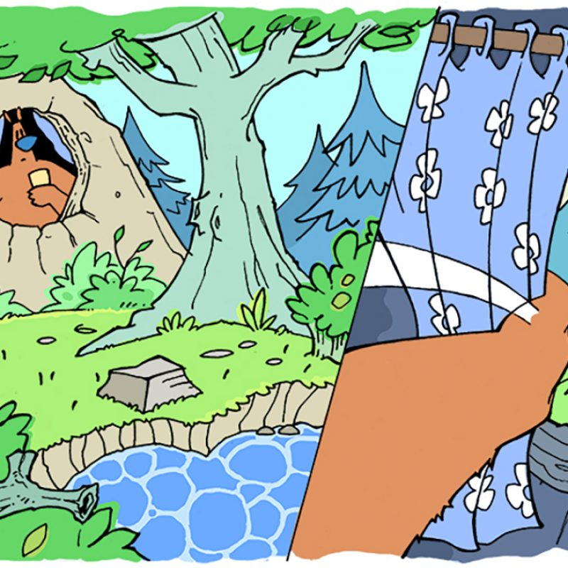 A comic book image of a bear, looking out of its cave, art a woodland scene with a river running by.