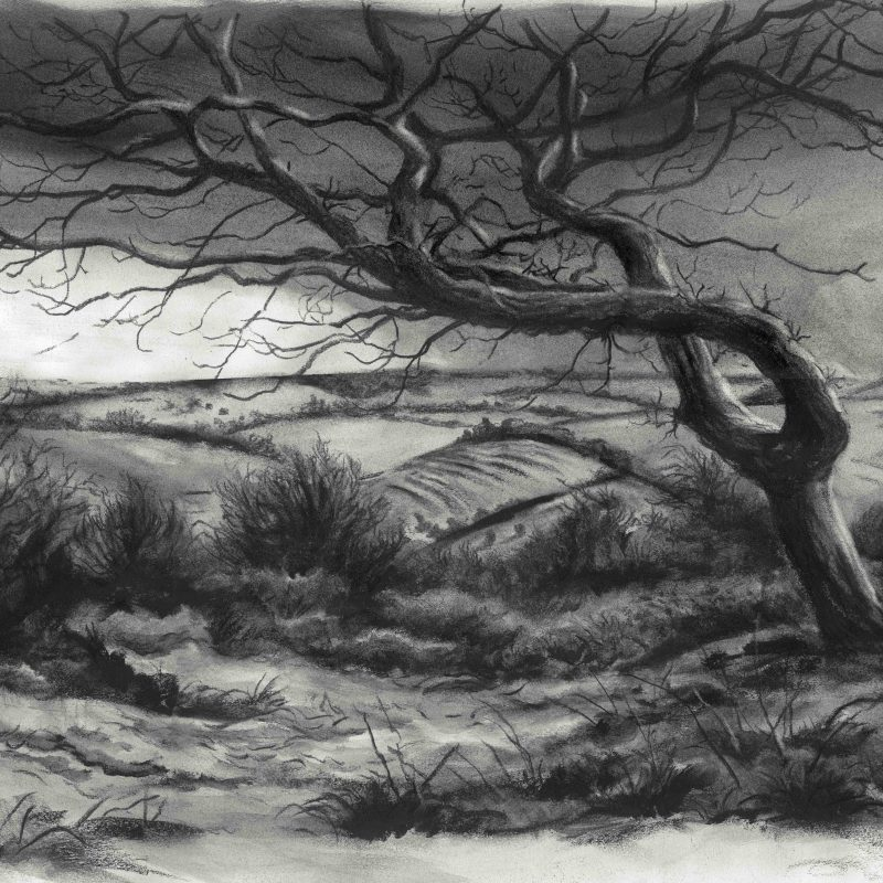 Charcoal landscape from New Timber Hill with wintry hill
