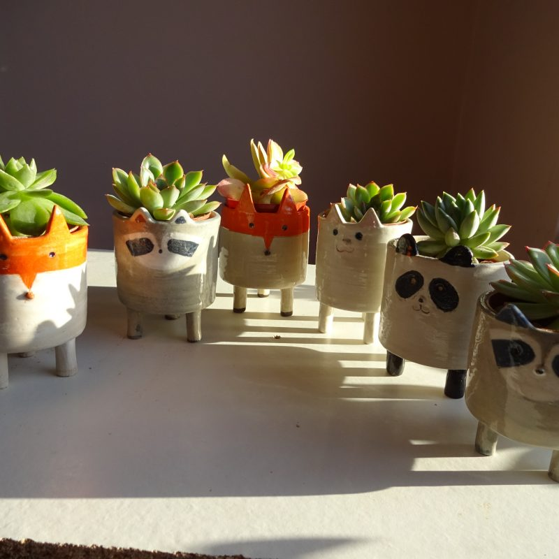 Ceramic planters in the shape of animals. Fox, racoon, panda and kitten all available. 9cm high. Includes succulent.