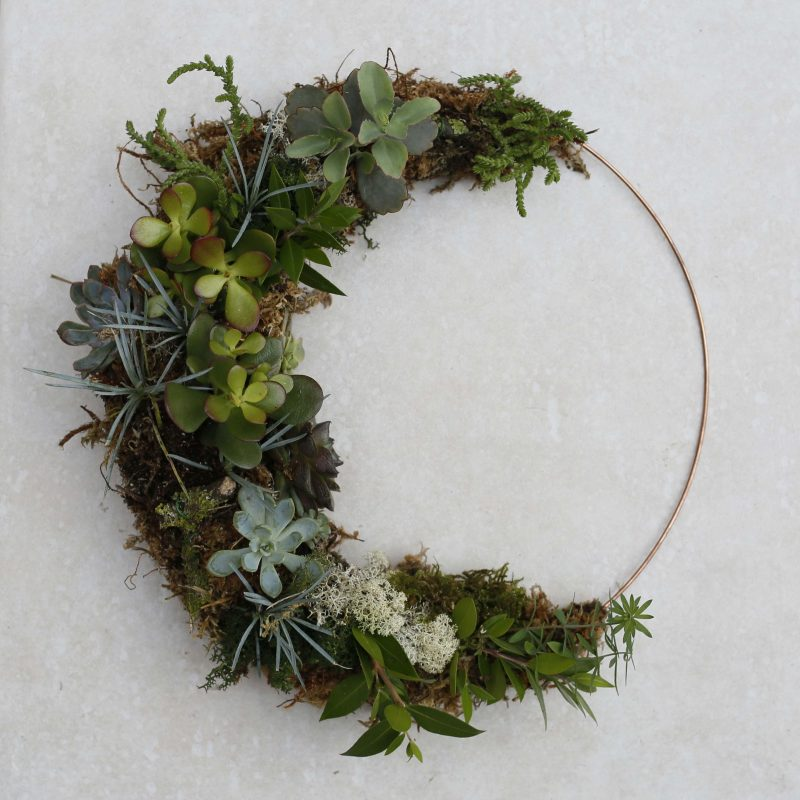 A crescent moon shape of succullents rooted in moss on a copper ring