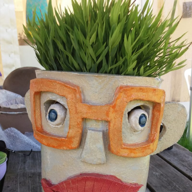 Colourful head containing a plant for hair