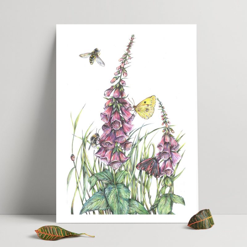 A print of two pink fox gloves with a white background. Butterflies and a bee fly in the background.