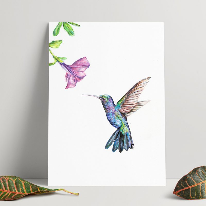 A print of a hummingbird rests against a plain wall. The bird is blue and purple toned and faces a purple flower.