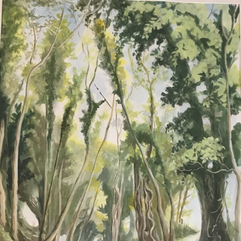Painting in greens of Path from Saddlescombe