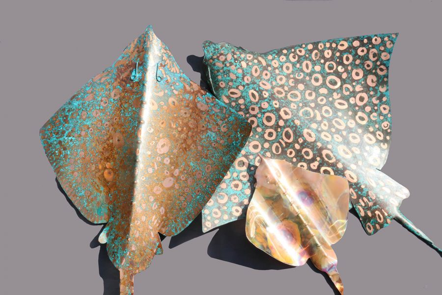 Verdigris copper and heat stressed copper ray