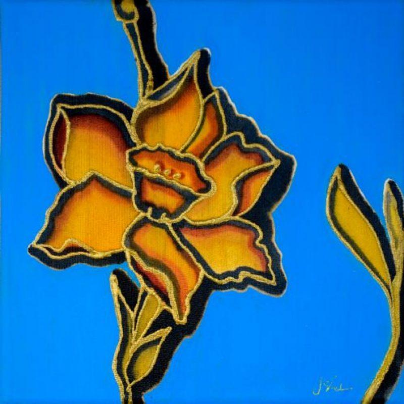 Daffodil on blue background