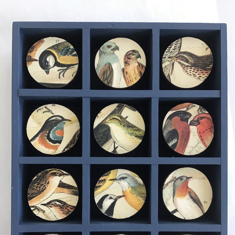 A box with alcoves filled with circular images of birds