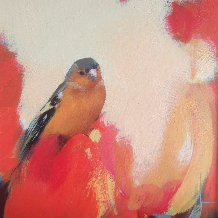 The image is of a small chaffinch sitting in red with yellow.