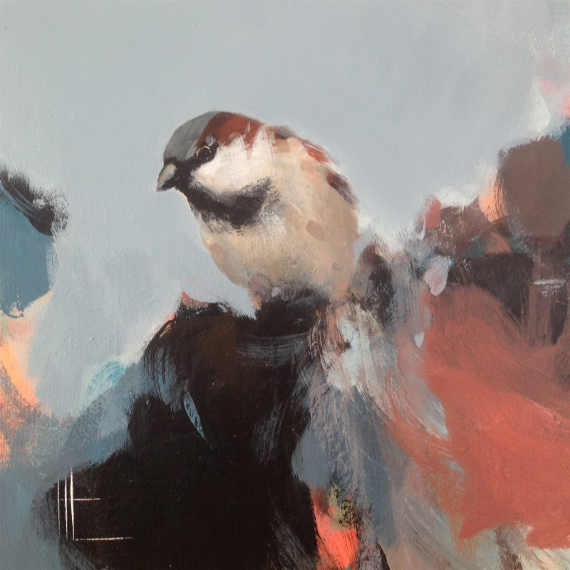 Sparrow leaning forward whilst sitting in blues.