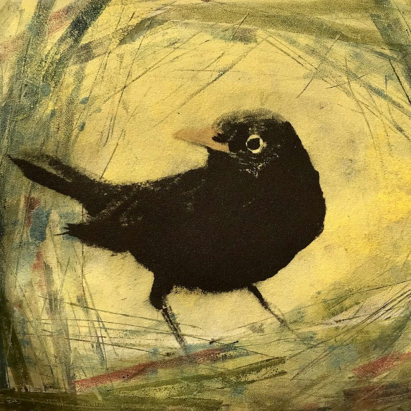 Image of blackbird on yellow background
